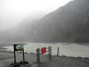 The Pathway Leading to New Zealand's Fox Glacier