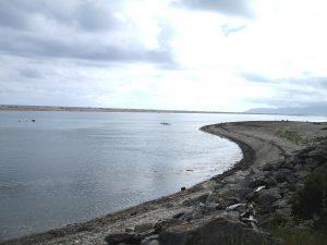 Haast River Estuary